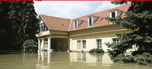 Water damage can lead to a need for mold remediation